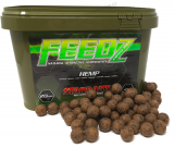 Boilies Feedz 20 mm 4 kg - HEMP - Starbaits