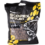 Nash Boilies 24mm 1kg Stabilised Scopex & Squid