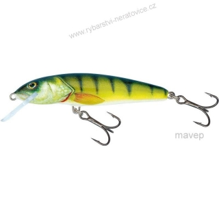 Wobler SALMO Minnow 6 S PH